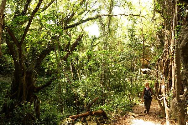 Auf dem Weg in die Höhle, Lifou - Neukaledonien