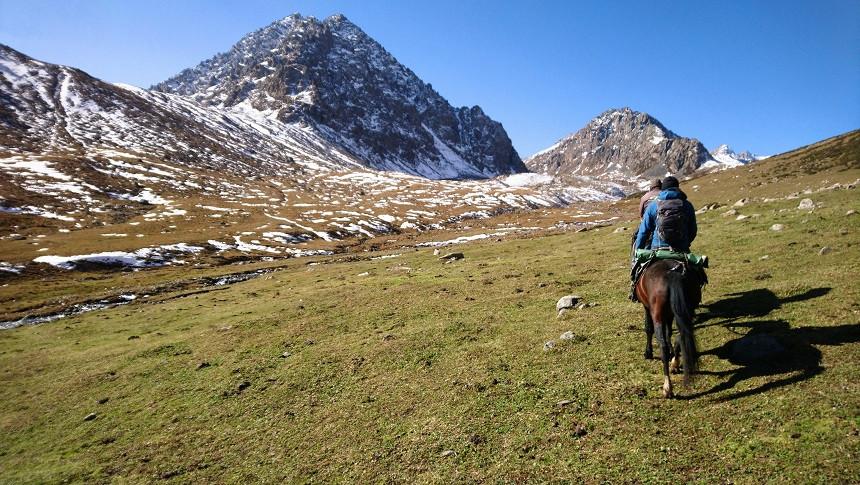 Berge unf Pferde