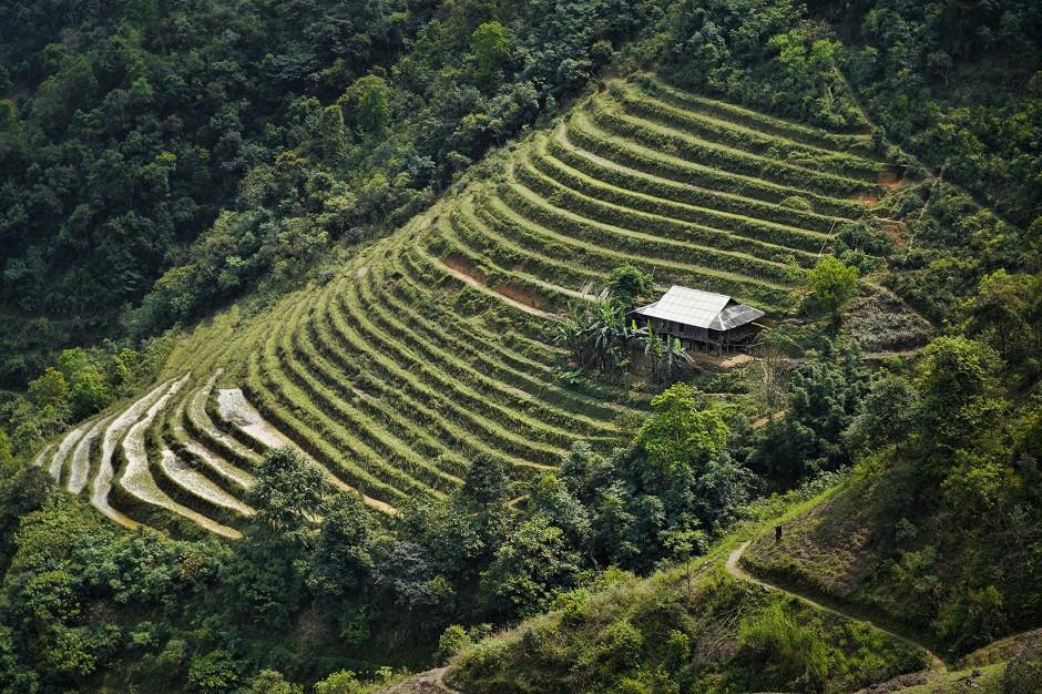 Haus an einer Reisterasse in Vietnam