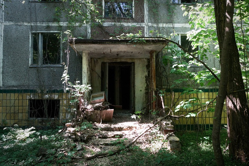 Zugewachsener Hauseingang Prypjat