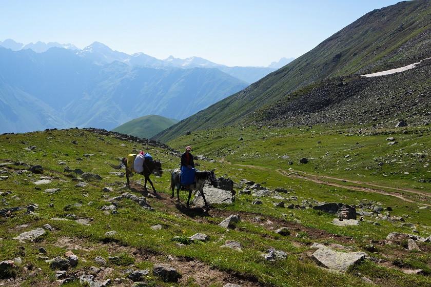 Pferde und Aussichten auf der Wanderung zum Gergeti Gletscher