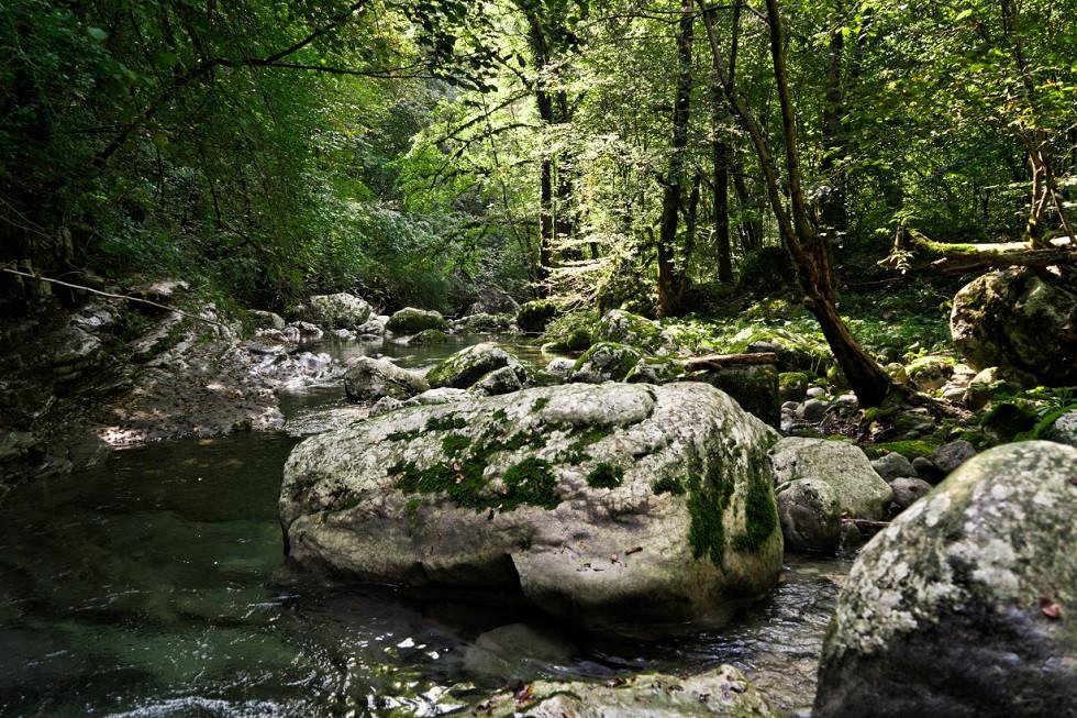 Stein im Flussbett im Soča-Tal