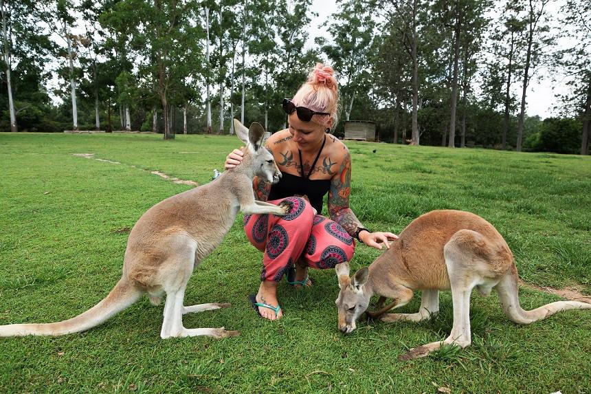 Kati und zwei Kängurus