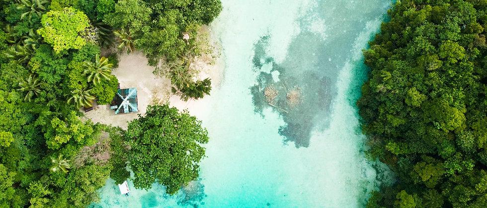 Palau Lagune .jpg