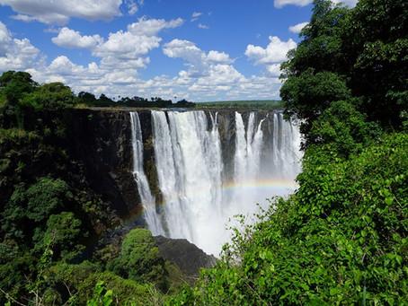 Botswana und Simbabwe Selbstfahrer Reisebericht: Safari auf eigene Faust Teil 2