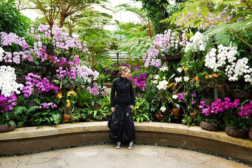 Orchideenpark - Okinawa