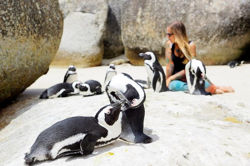 Pinguine und Kati in Südafrika