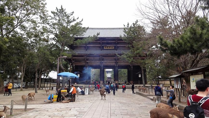 Nandaimon Tor und Rehe im Nara Park