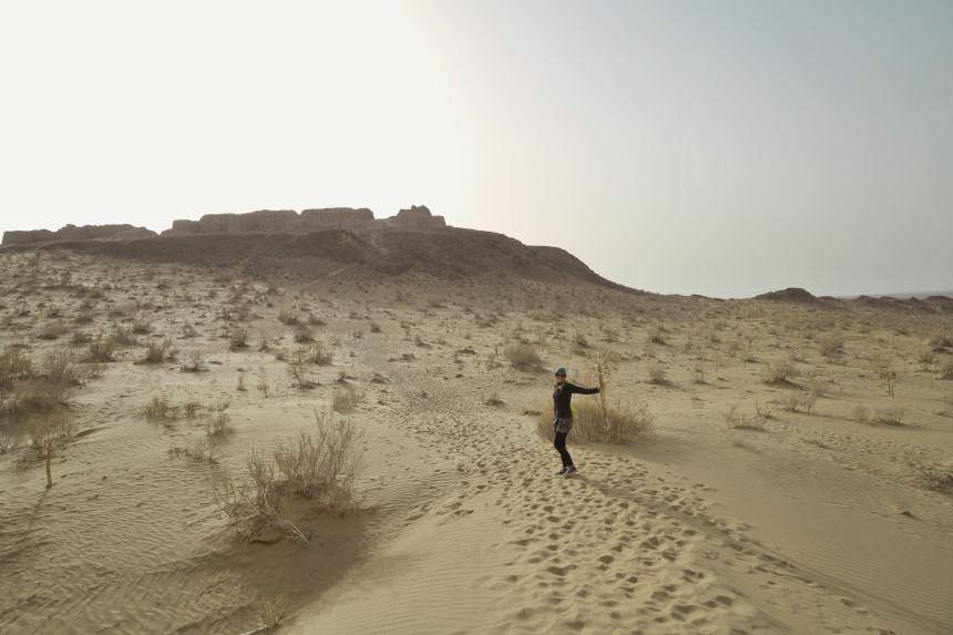 Kyzylkum Wüste in Usbekistan