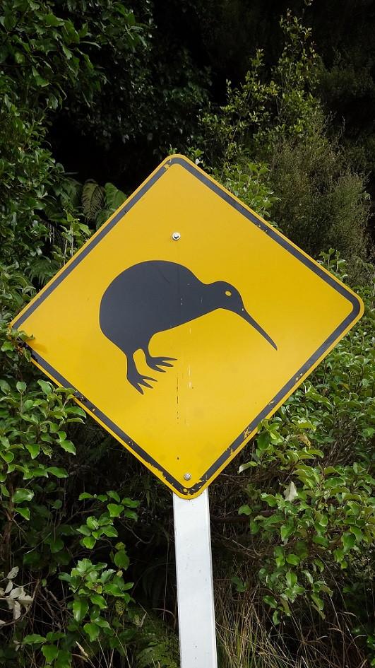 Vorsicht Kiwi Schild