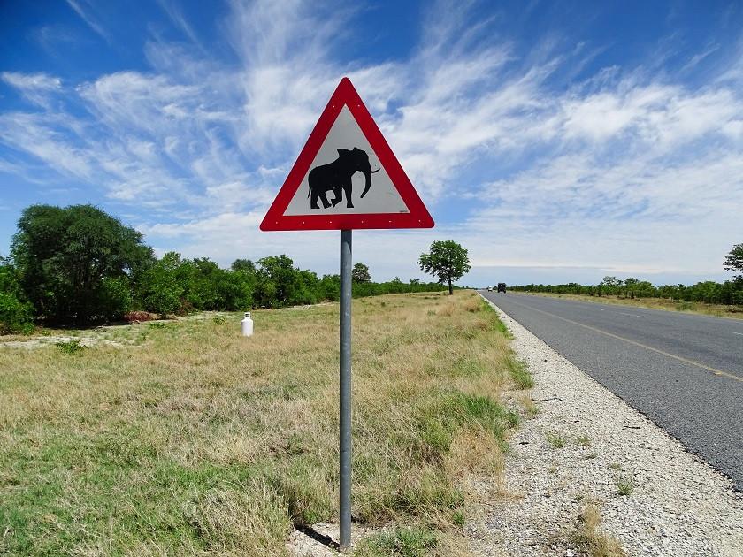 Achtung Elefanten