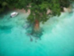 Ngchus-Palau