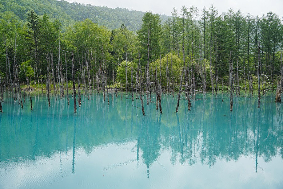 Der türkise Shirogane Blue Pond in Biei