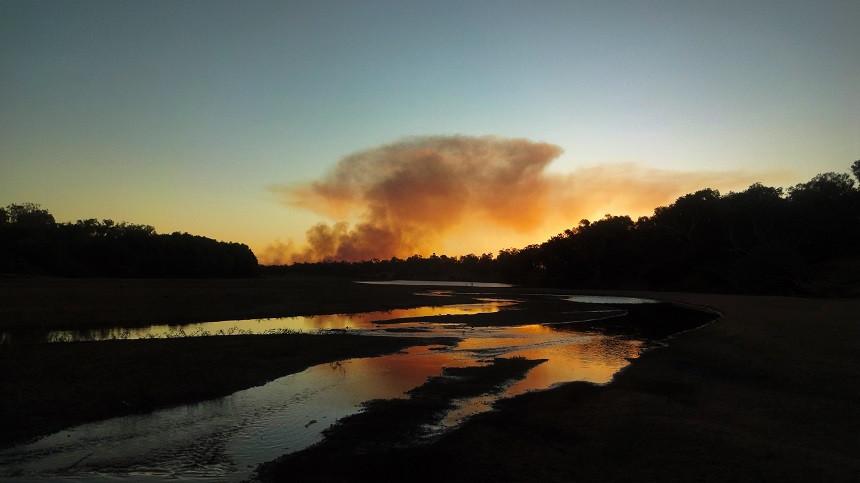 Lodernde Buschfeuer am Horizont in Fitzroy Crossing