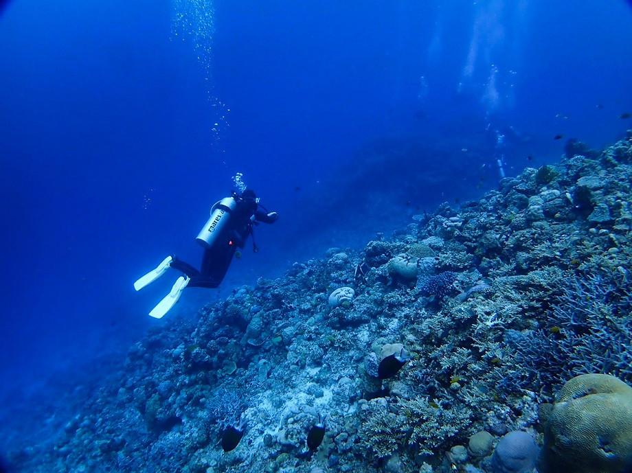 Tauchen auf Aka Island