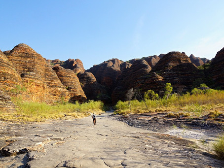 Purnululu National Park: Bungle Bungle, ein Naturwunder in den Kimberleys