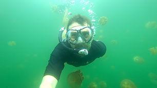 Hermann taucht im Quallensee auf Palau.j