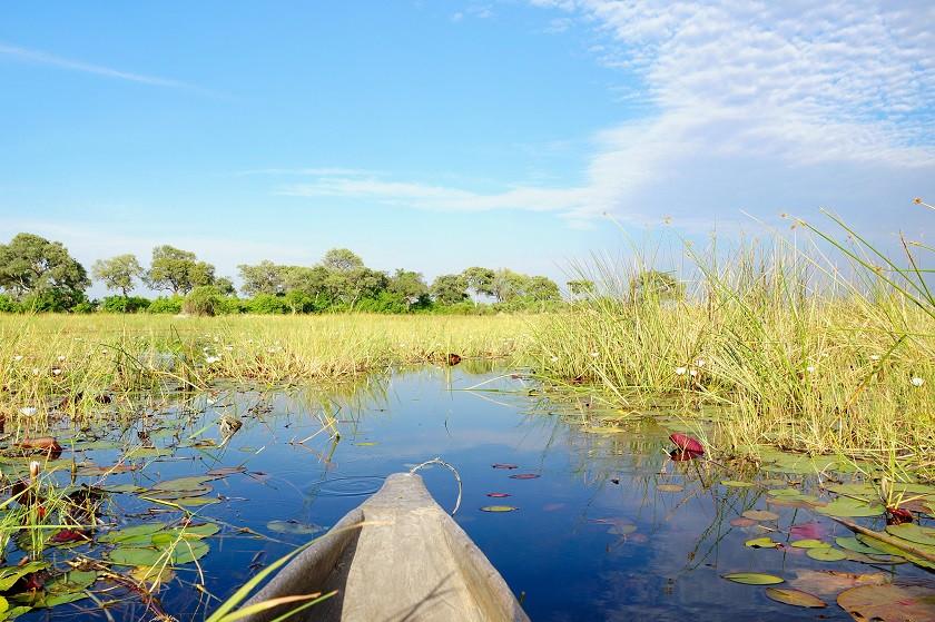 Okavango Delta im Mokoro erkunden