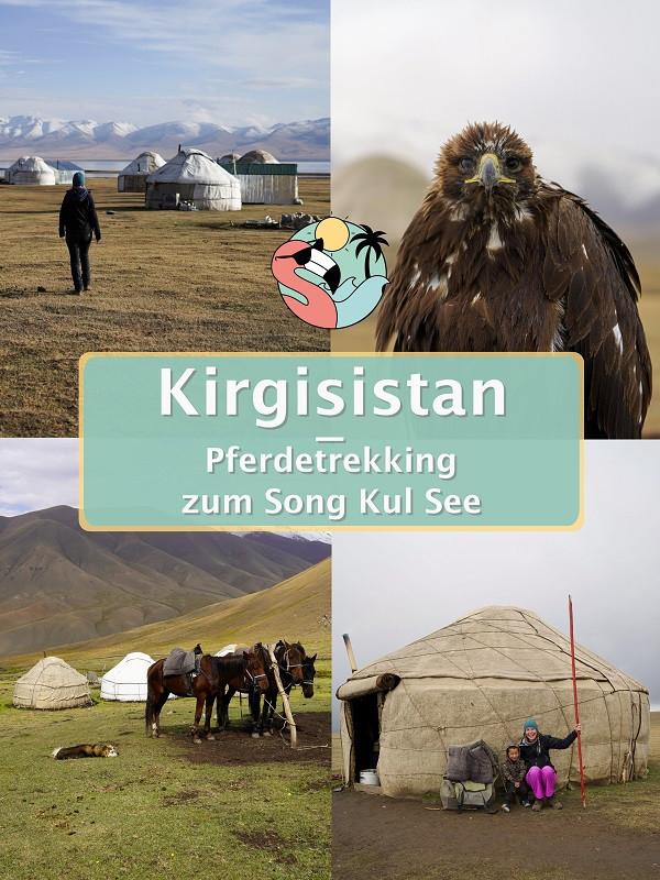 Pferdetrekking Sing Kul See - Kirgisistan Pin