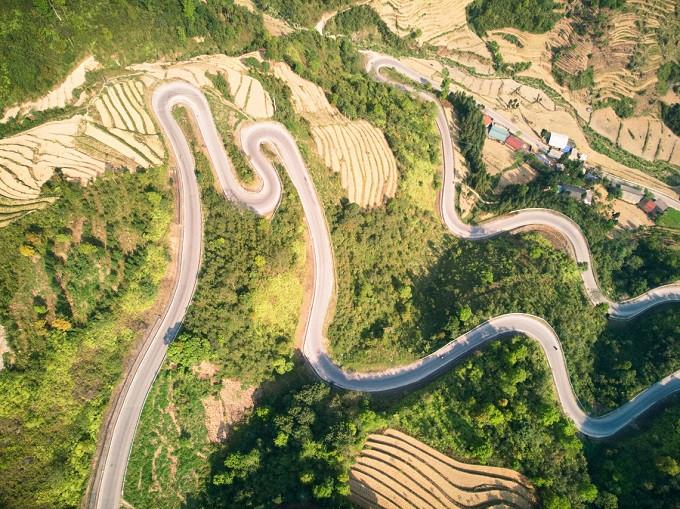 Serpentine in Vietnam.jpg