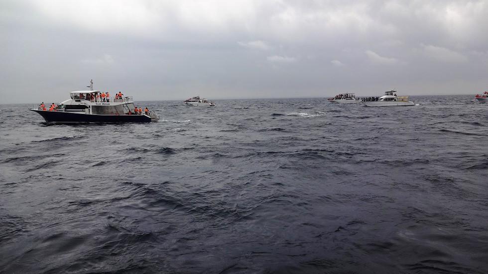 Vollbeladene Whale Watching Boote - Okinawa