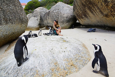 kati mit pinguinen in Suedafrika