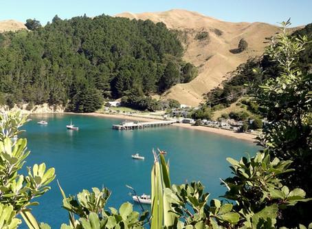 French Pass: Ein verschlafener Ort in den Marlborough Sounds