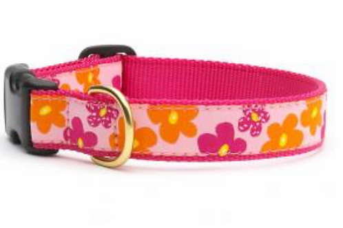 Up Country Pink and Orange Flower Dog Collar