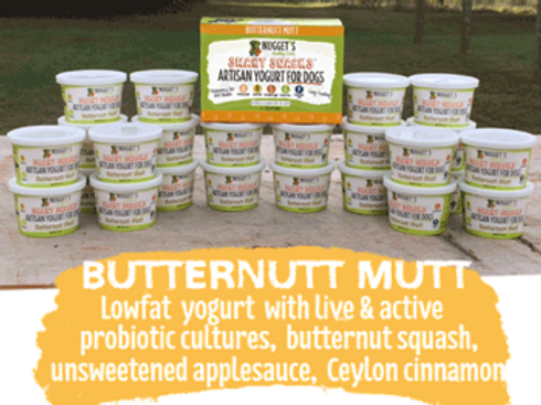 Nugget's Butternutt Mutt Frozen Yogurt for Dogs
