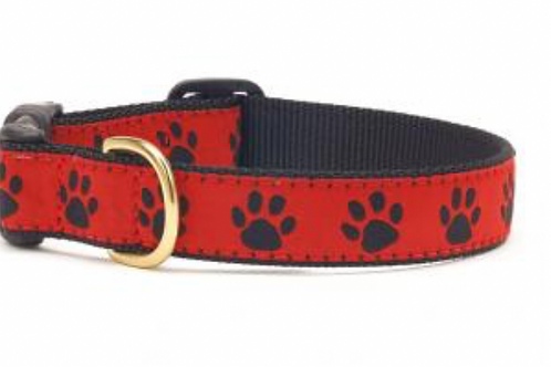 Up Country Paw Print Dog Collar