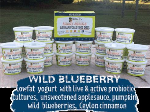 Nugget's Wild Blueberry Frozen Yogurt for Dogs