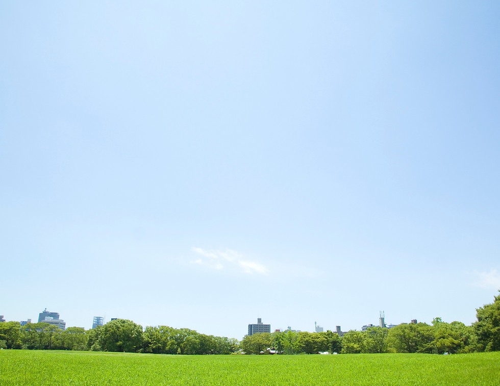 Park Background Stock Image.png