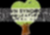 DSOSN Logo png.png