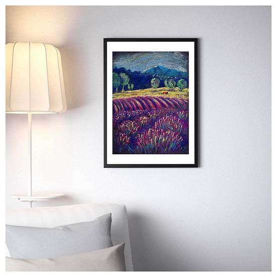 LAVENDER FIELDS. Digital Art. Landscape Painting