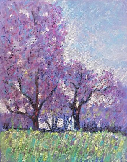 Jacaranda. Tree. Original painting. 50x65 cm