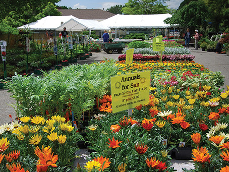 MARK YOUR CALENDAR FOR THE MAPLEWOOD GARDEN CLUB'S 84TH ANNUAL PLANT SALE