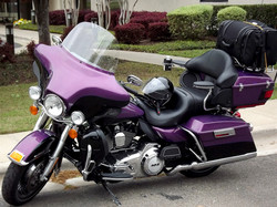 Darrell & Louise's Harley