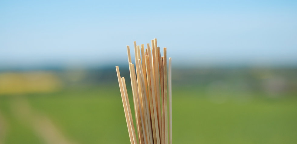 Rawstraw- sustainable drinking straws