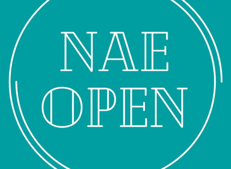 NAE SUMMER OPEN - ARTISTS WANTED