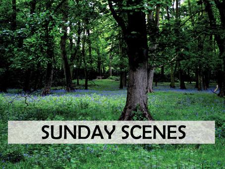 SUNDAY SCENES