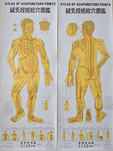 石川県 白山市 能美市 小松市 加賀市の鍼灸 和田鍼灸治療院 自律神経失調症 不妊症 慢性疾患などに注力しています。この写真は全身にある361穴の図です。
