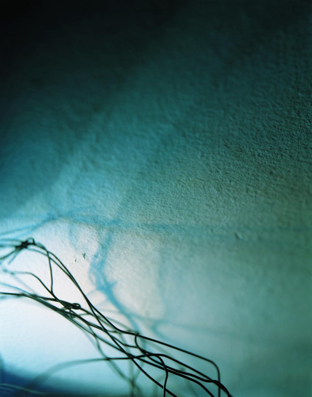 wirelight 2004