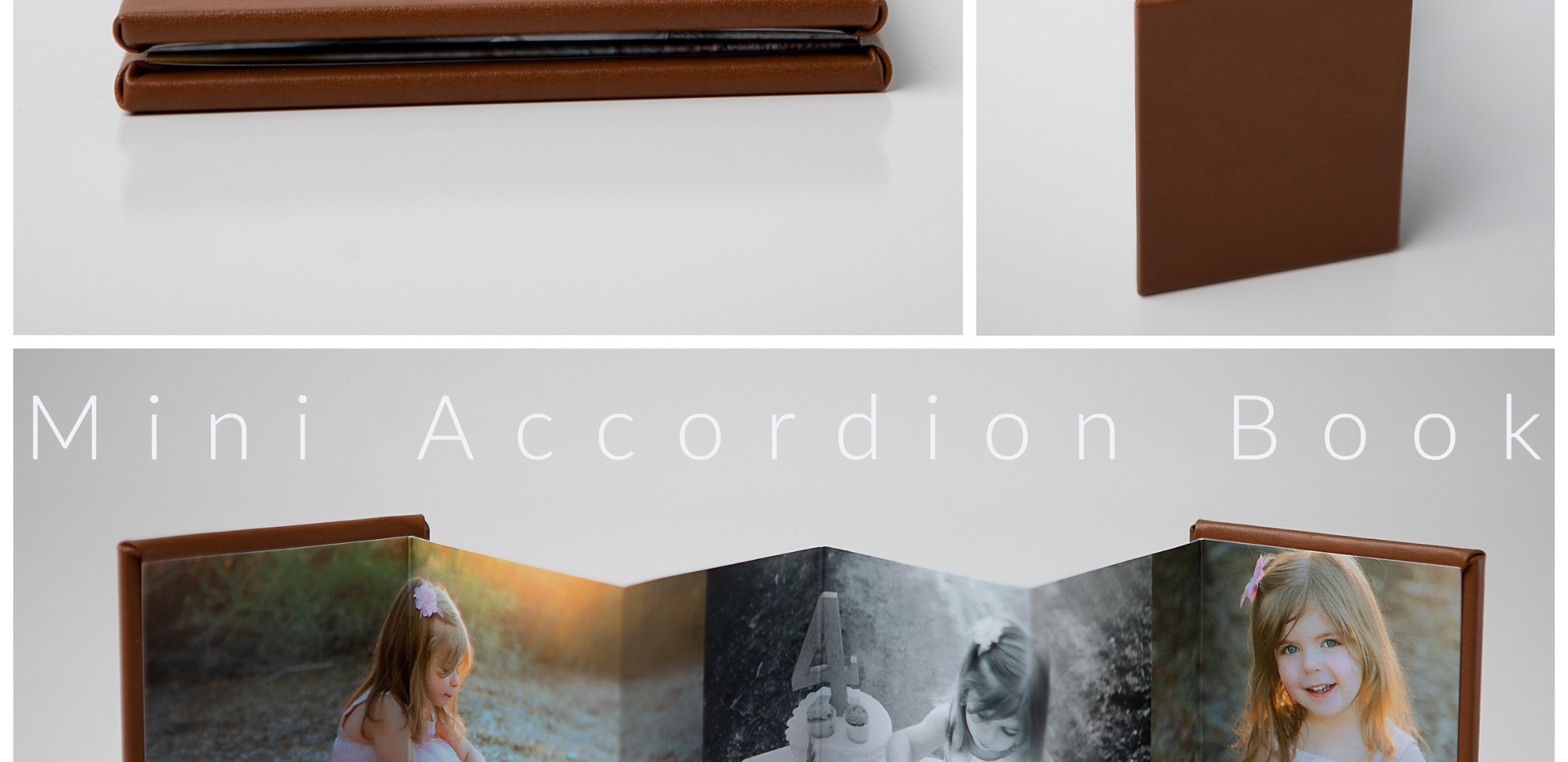 Accordion (1).jpg