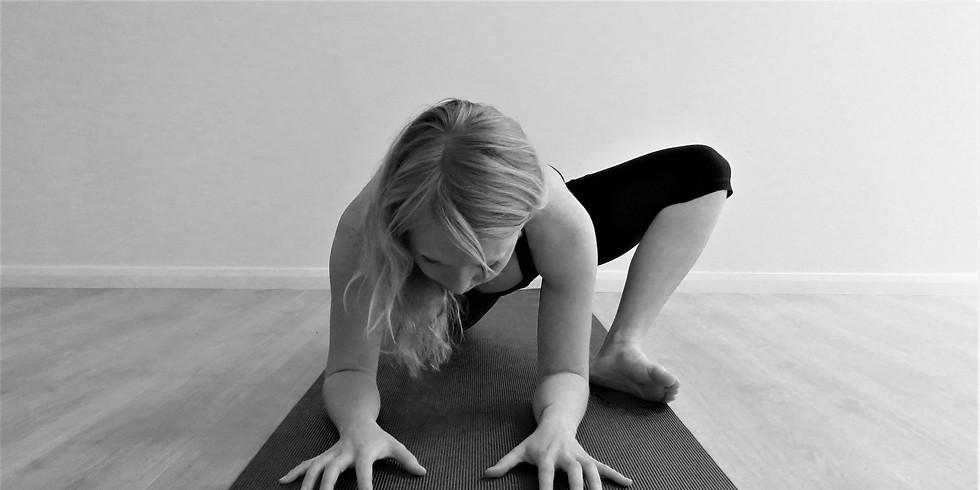 30hr Yin Yoga Teacher Training