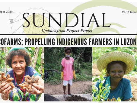 Read our latest Sundial Newsletter!