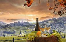 249510-1600x1030-best-italian-wine-recom