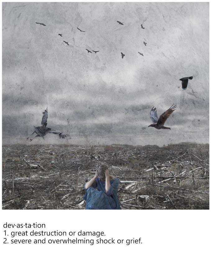 Sara Harley - Stroke of Emotions Nova Scotia photo artist