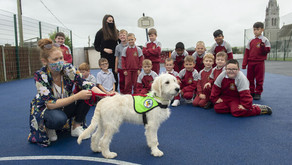 """(Ireland) Cork school """"boasts three special classes for autistic children""""; adds therapy dog"""
