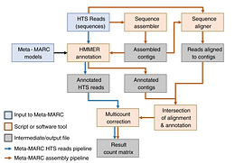 Hierarchical Hidden Markov models enable accurate and diverse detection of antimicrobial resistance sequences