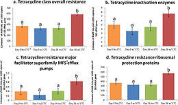 Effects of Ceftiofur and Chlortetracycline on the Resistome of Feedlot Cattle
